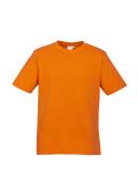 T10032_T10012_Orange